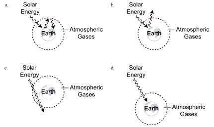 mcq on greenhouse gases